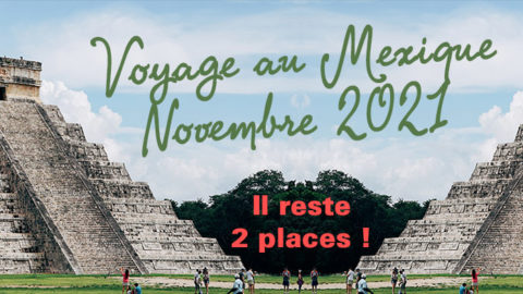 Reste 2 places ! Partez au Mexique en 2021