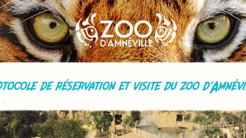 Protocole de réservation et visite du zoo d'Amnéville